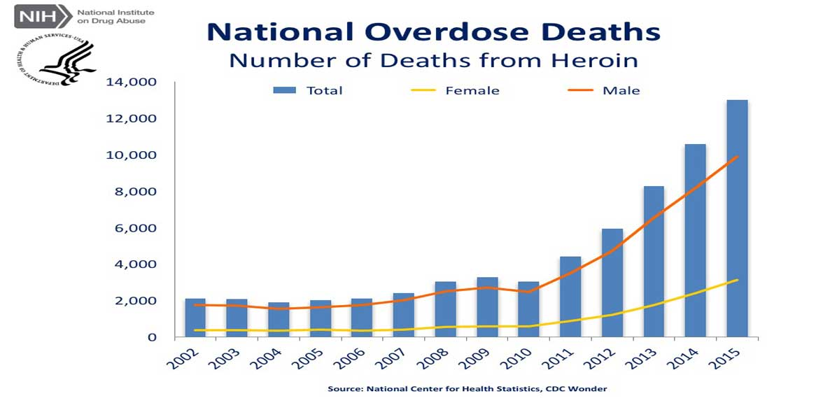 Opioid Abuse Leads to Heroin Use